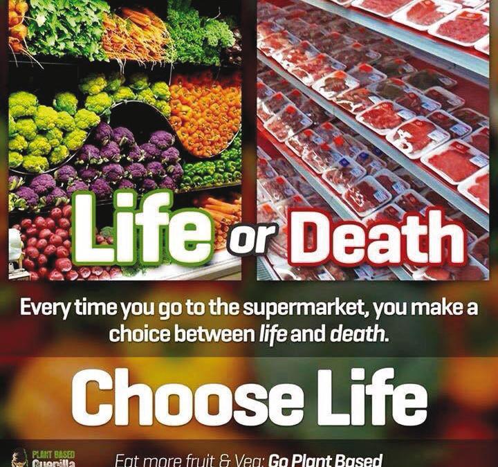 Eine Entscheidung über Leben oder Tod