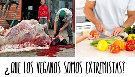 Ist der Veganismus extrem oder die Misshandlung von Tieren und Menschen?