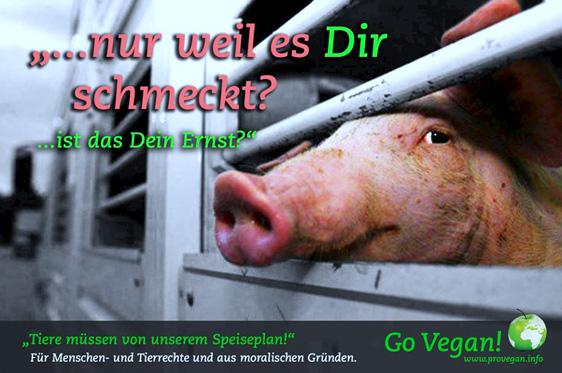 """""""Ist Veganismus eine Angelegenheit der eigenen freien Wahlmöglichkeit? Das hängt davon ab, ob Sie denken, dass wir das moralische Recht einer Wahl haben, die Schutzlosen für frivole Zwecke wie einem Gaumenkitzel auszubeuten."""""""