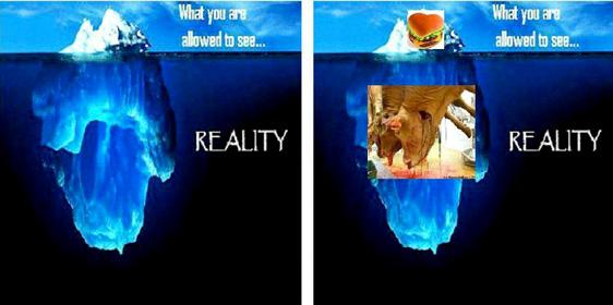 Hat jeder Mensch die Möglichkeit, die zunächst unsichtbare Realität zu erkennen?