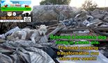 Video: Wunderbare Rettung eines Hundes