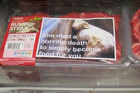 Sie starb einen schrecklichen Tod, nur weil Du sie als Nahrung wolltest!