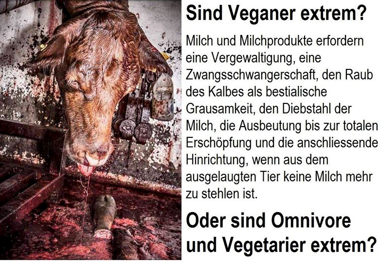 Sind Veganer extrem?