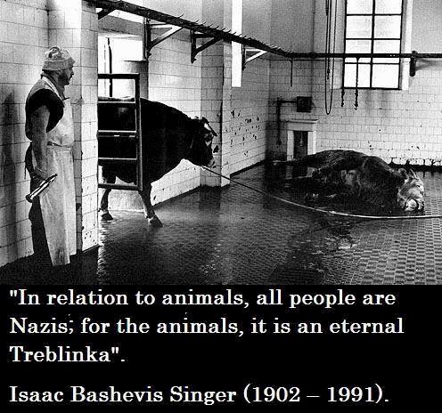 Gewalt durch den Konsum von Tierprodukten – Was ist Ihre Lösung?
