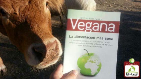 Spanien wird vegan: Die Vegan-Broschüre jetzt auch in spanischer Sprache