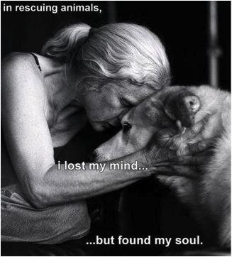 Tiere zu retten, raubte mir den Verstand, aber ich fand meine Seele.