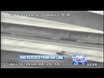 Video: Mutiger Mann rettet Hündin mit gebrochenen Beinen und inneren Blutungen auf einer Schnellstrasse