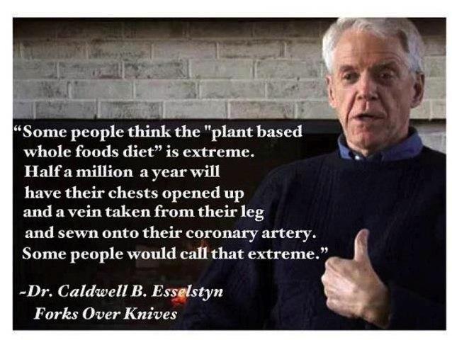 Ist rein pflanzliche Ernährung extrem?