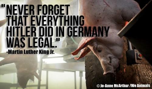 """""""Vergessen Sie nie, dass alles das, was Hitler in Deutschland tat, legal war."""" (Dr. Martin Luther King)"""