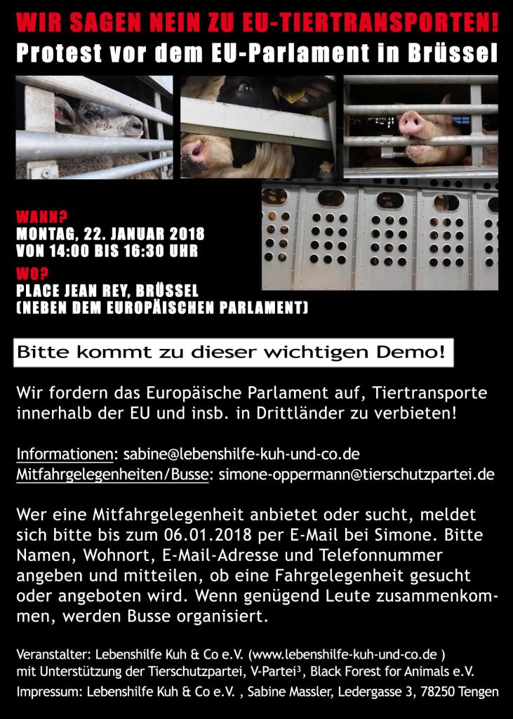 EU-Tiertransporte-Demo-Flyer